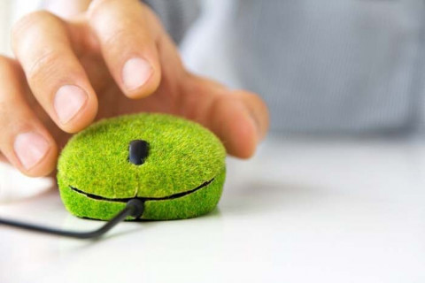 The adoption of Green IT strategies as a form of Corporate Social Responsibility
