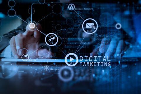 Digital Marketing Digest